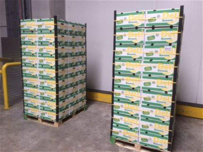 Drie ton cocaïne in Antwerpen gepakt