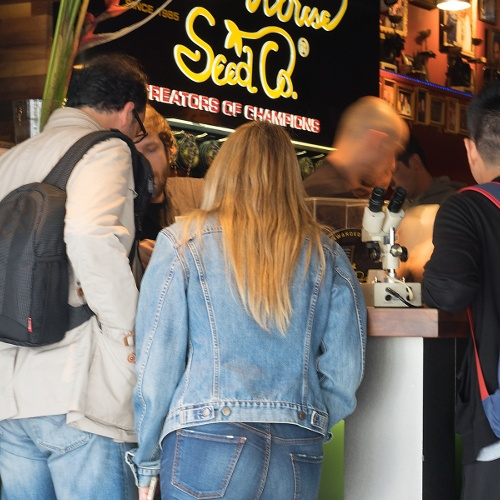 OM slordig over inbeslagnames coffeeshops