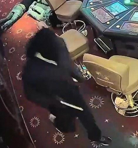 Buit overvallers casino alleen los geld (VIDEO)