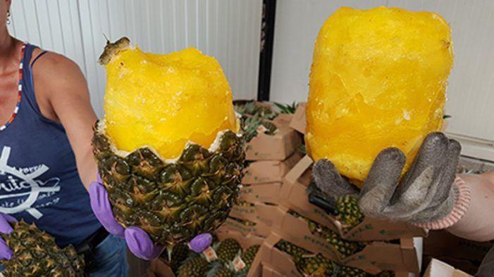 OM eist 4 jaar voor cokesmokkel met ananassen