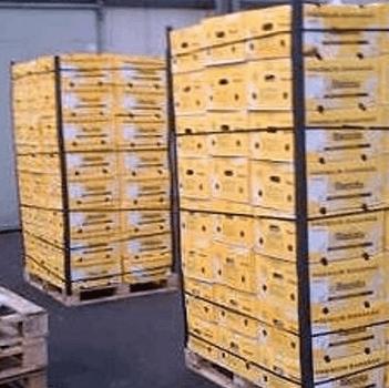 Reconstructie van de 1800 kilo coke-zaak
