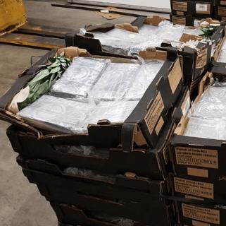 5 aanhoudingen voor 500 kilo coke