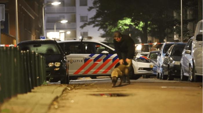 Zwaargewonde na 'mogelijke schietpartij' in Den Haag