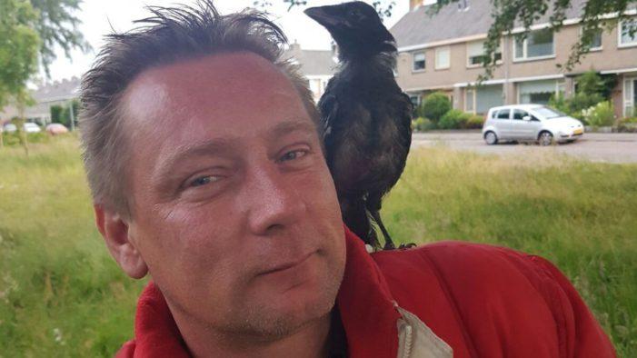 Vrouw opnieuw aangehouden in Helderse moordzaak