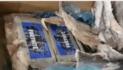 1,4 ton cocaïne voor Antwerpen en Rotterdam onderschept (VIDEO)