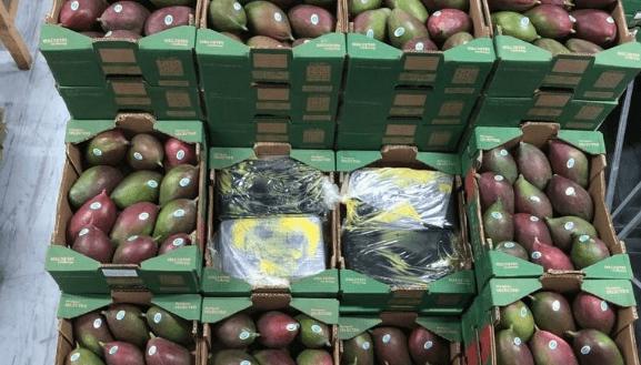 Rotterdamse douanier aangehouden voor 1500 kilo coke
