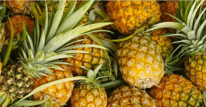 Fruitbedrijf ten prooi aan cocaïnehandel (#1)