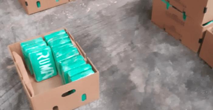 Politie screent fruitbedrijven op cocaïne-connecties