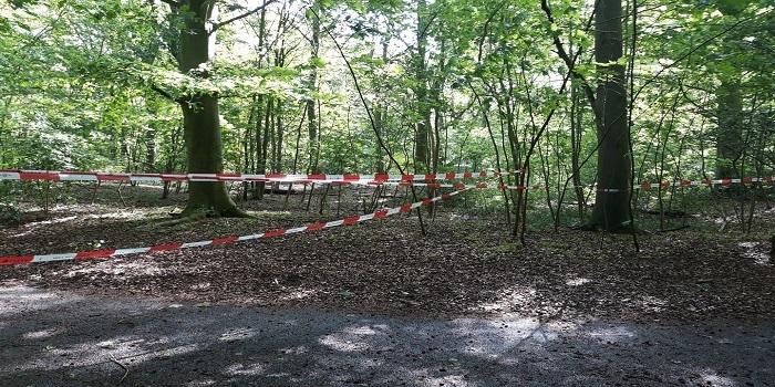 Politie vermoedt misdrijf bij dode vrouw in Scheveningse Bosjes