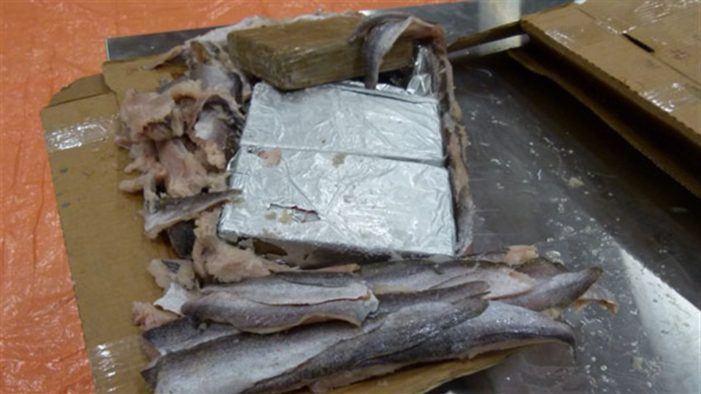 Tot 7 jaar cel voor smokkel van cokelading ter waarde van 22 miljoen euro