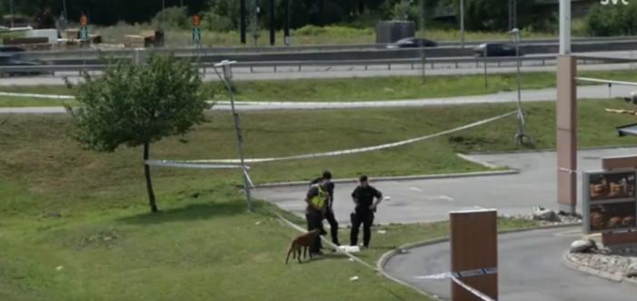 Zweedse politie zoekt naar schutter(s) die 12-jarig meisje op straat doodden