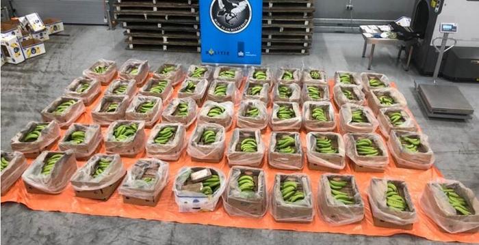 743 kilo cocaïne uit Ecuador onderschept in Rotterdamse haven
