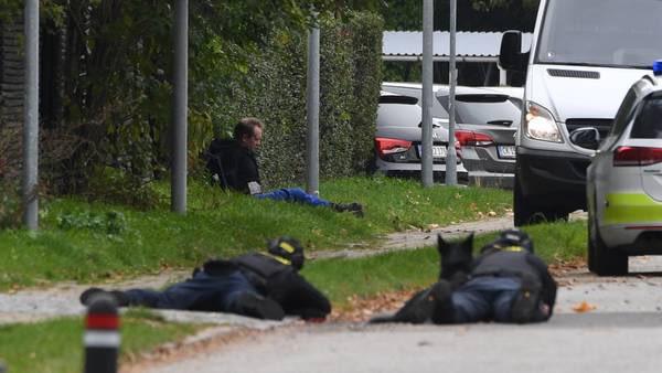 Deense moordenaar gepakt na ontsnapping (UPDATE2)(VIDEO)