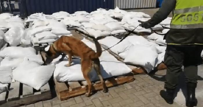 357 kilo coke in Colombia onderschept voor België (VIDEO)