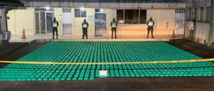 1,5 ton cocaïne en avocado's voor Nederlands bedrijf (VIDEO)