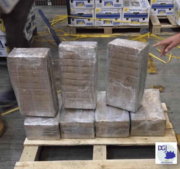 Albanezen gearresteerd in grote actie tegen cocaïnehandel