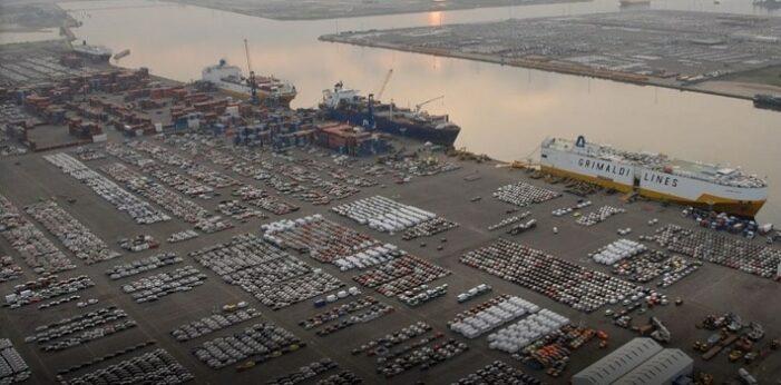 Drie Nederlandse cocaïne-uithalers opgepakt in Antwerpse haven