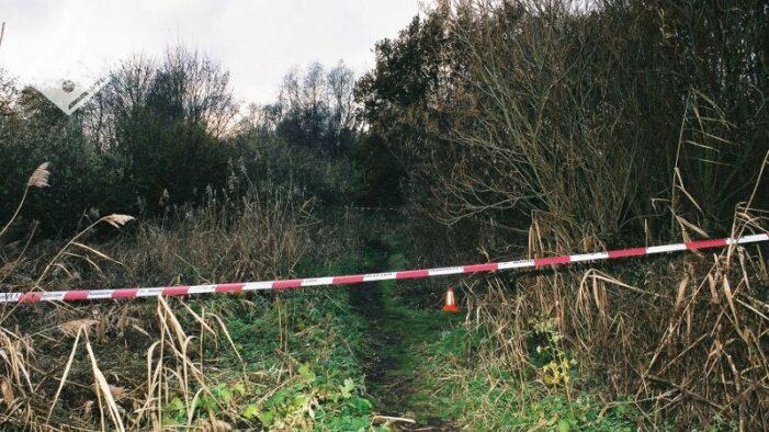 Na 17 jaar verdachte aangehouden in moordzaak Yvette Looijs