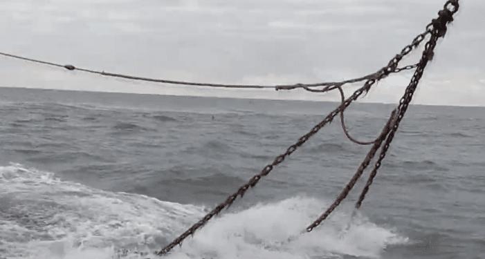 Vissers krijgen controle van de overheid