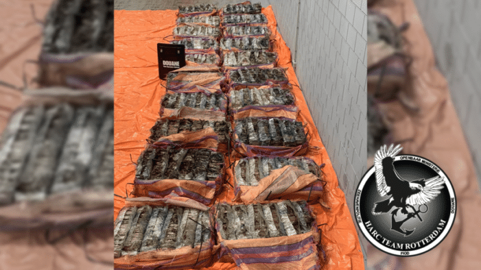 1,4 ton cocaïne tussen de cacaobonen gepakt