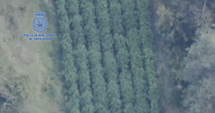 Buitenwietplantages op Spaanse platteland opgerold (VIDEO) (UPDATE)
